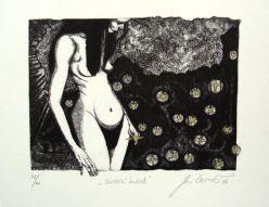 Sbírání hvězd (Inter Amorem Silent Muse)