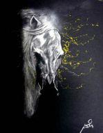 Stallion - sand paper sketch